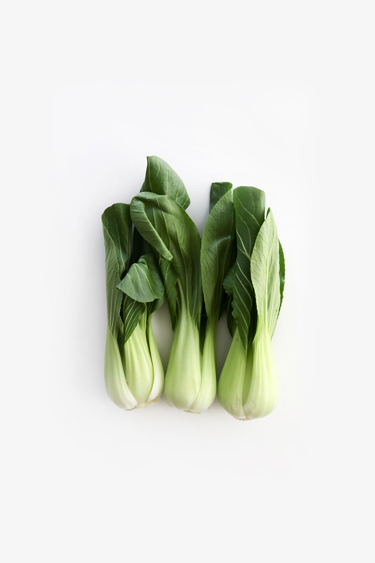 Keto Bok Choy, a guide to keto foods for low carb. keto, keto ingredients, keto foods, keto produce, keto vegetables, ketogenic diet, keto shopping list, low carb, low carb foods, low carb vegetables, lchf, lchf foods