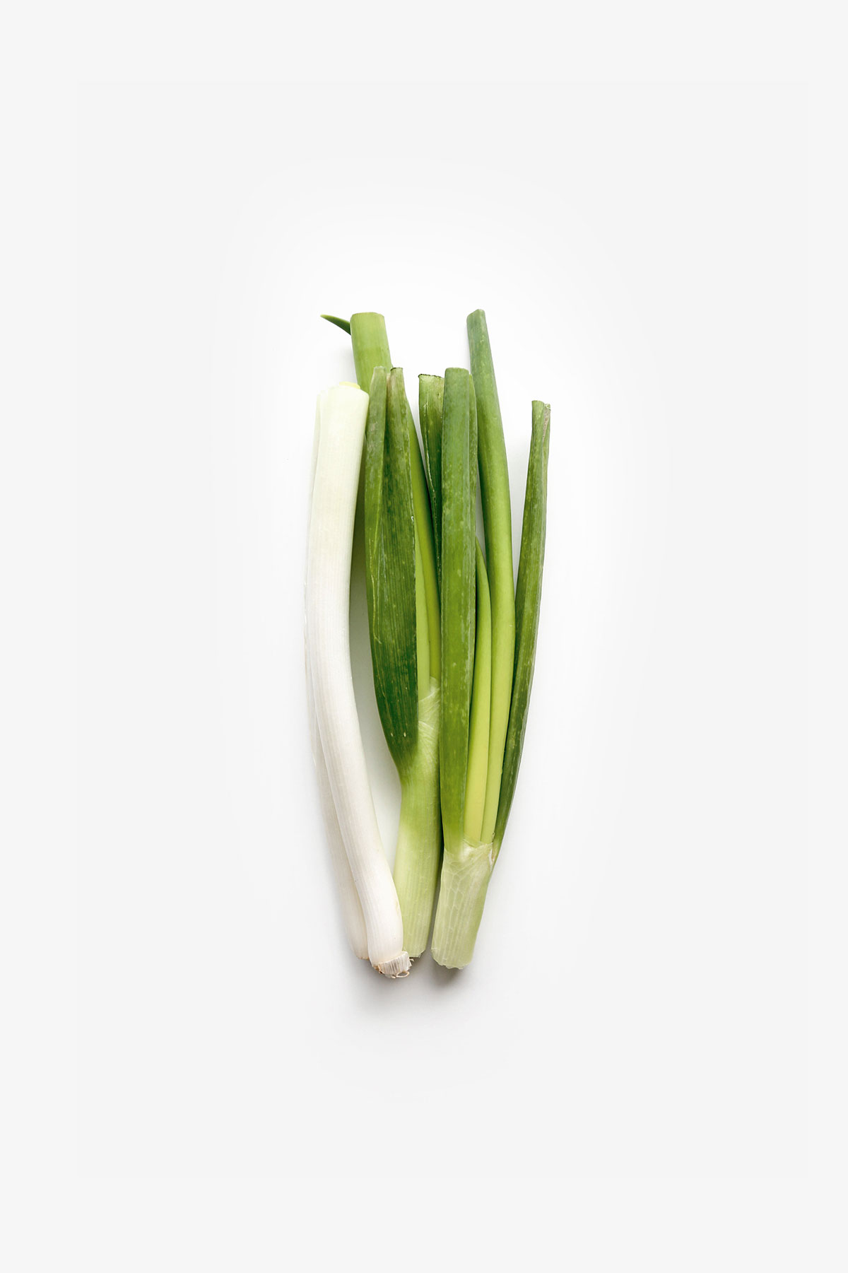 Keto Spring Onion, a guide to keto foods for low carb. keto, keto ingredients, keto foods, keto produce, keto vegetables, ketogenic diet, keto shopping list, low carb, low carb foods, low carb vegetables, lchf, lchf foods